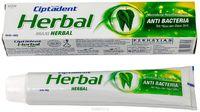Зубная паста Ciptadent Herbal.LION